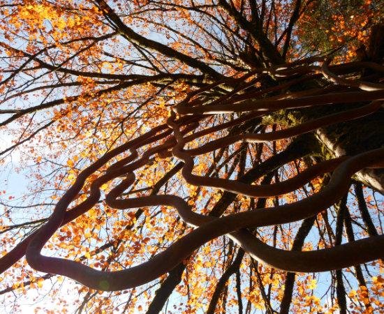 skulpturenpark-kramsach-schild